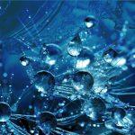 50 razones para oponerse a la fluoración del agua potable